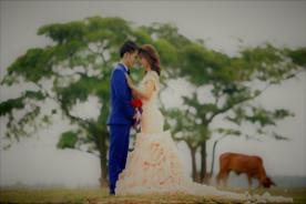 Matrimonial's website service in Bangladesh | Taslima Marriage Media